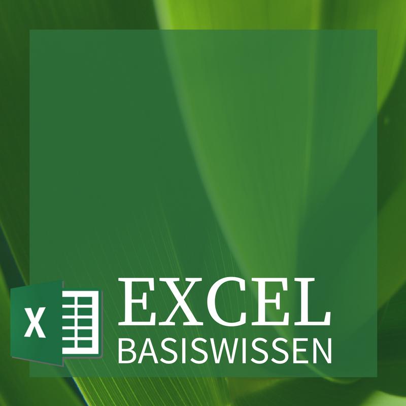 Excel Basiswissen - Front